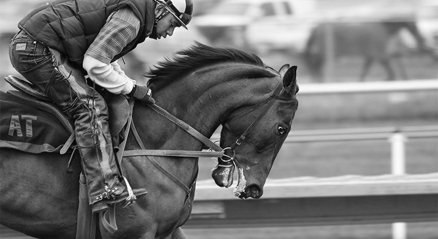 horse racing - How Sports Betting in America Developed